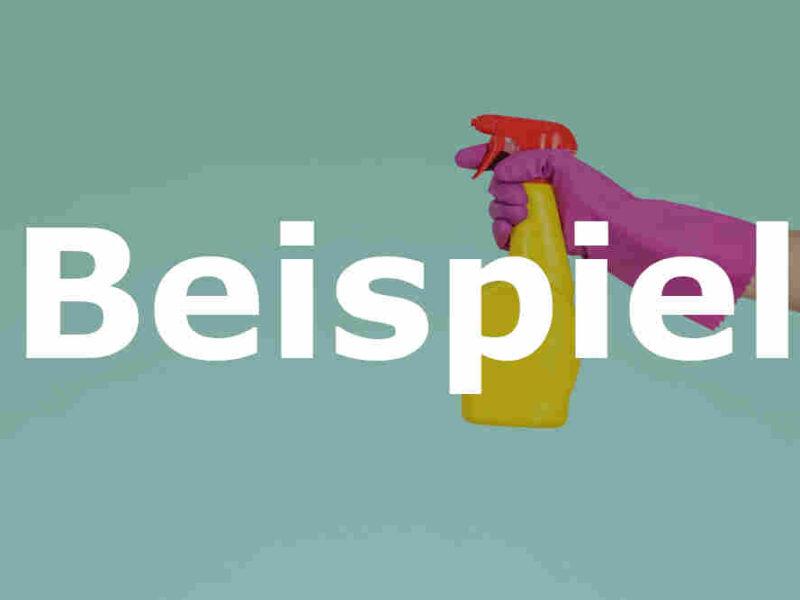 Reinigungsfirma kaufen (Schweiz) - Beispiel