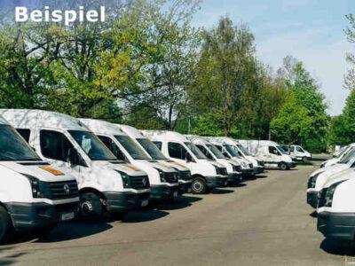 Transportfirma kaufen (Schweiz) - Beispiel